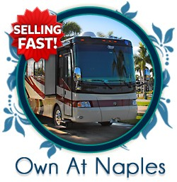 Own at Naples